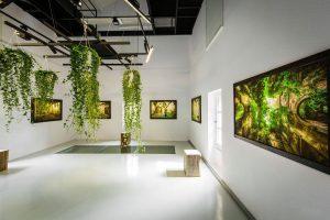 Image : Exposition au moulin - Maison de la Rivière - Terres de Montaigu